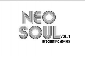 Neo Grooves Vol 1 by Scientific Monkey