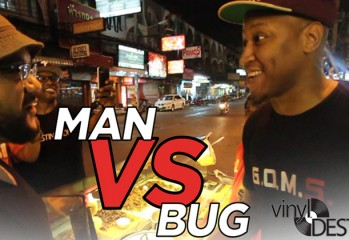 Man vs Bug Vinyl Destination